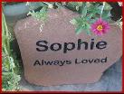 Rememberrocks Com Pet Memorials Page